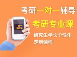 中国政法大学考研专业课一对一定制辅导!